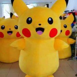 аниматор - покемон на детский праздник