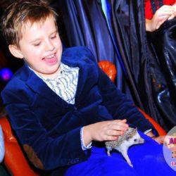 шоу пушистиков на детский праздник