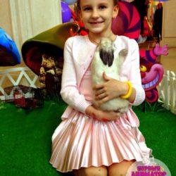 шоу пушистиков на детский праздник в Москве