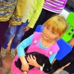 контактный зоопарк на детский день рождения