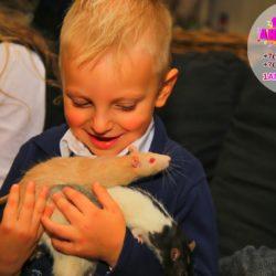 шоу с дрессированными животными Московская область