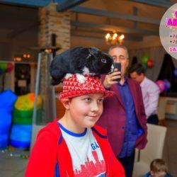 шоу животных на праздник в Московской области