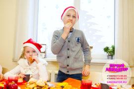 аниматоры на новогодний праздник для детей Бронницы