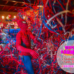 аниматор человек паук для детей