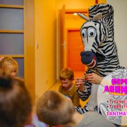 детские аниматоры Мадагаскар на день рождения ребенка